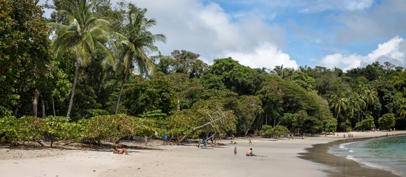 Beautiful Manuel Antonio Beach